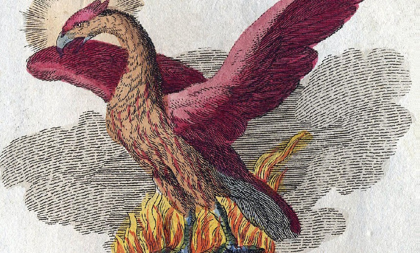 Selenium IDE rises like a phoenix from the ashes